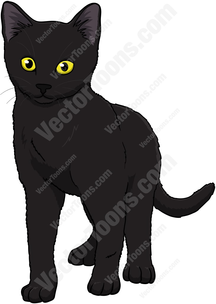 Black Kitten With Yellow Eyes Standing And Looking Ahead