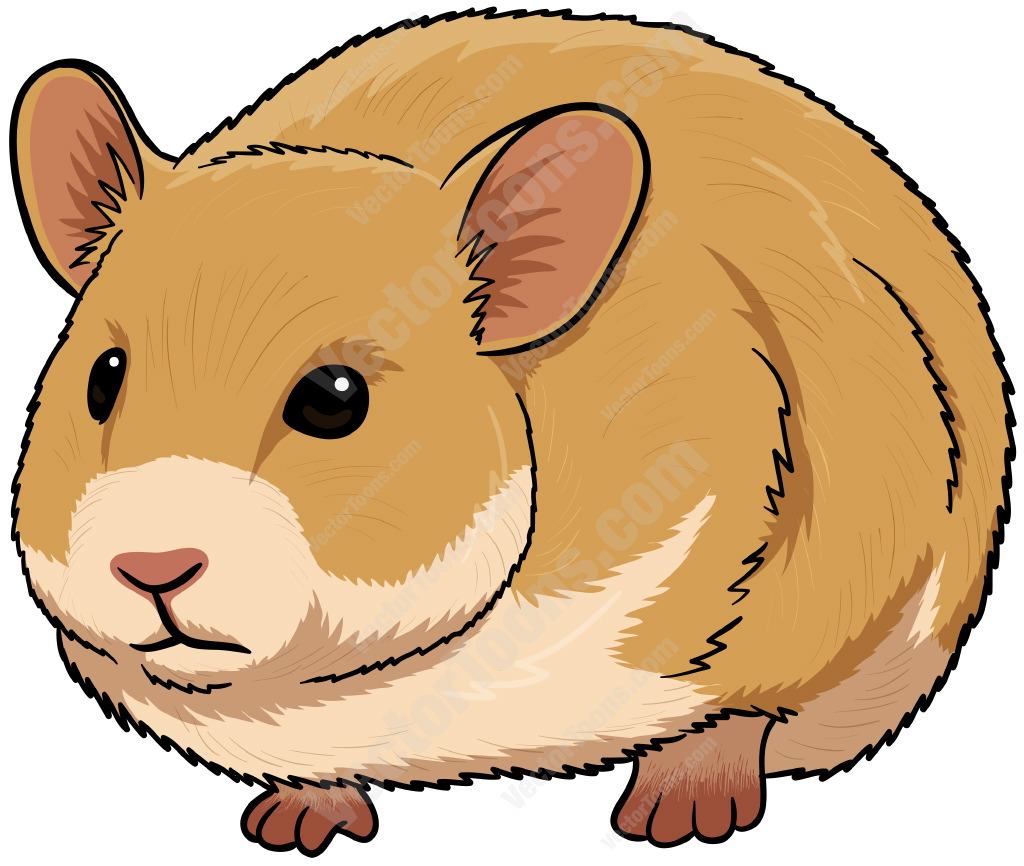 Cute Hamster Cartoon Cute brown hamster