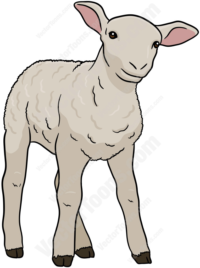 Little White Lamb Stock Cartoon Graphics Vector Toons