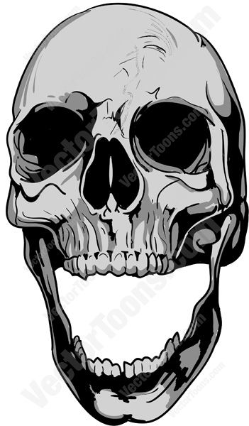 Vector Graphics: Gray Human Skull Bone With Open Lower Jaw ... Wolf Skeleton Drawing