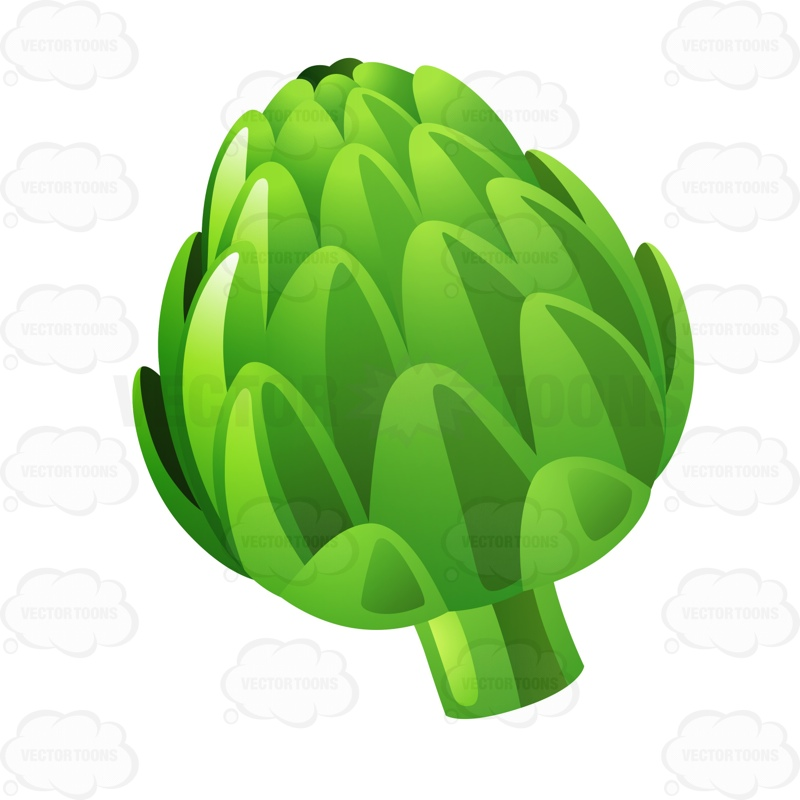 Green Artichoke Vector Graphics Vectortoons Com